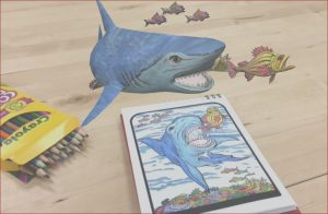 Augmented Reality Coloring Book Beautiful Gallery Quiver Education 3d Augmented Reality Colouring Angellist