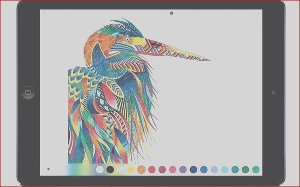 the best apps for ipad pro