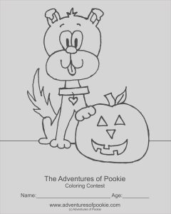 Coloring Contest for Adults New Photography Coloring Contest for Adults Coloring Pages
