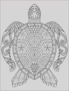 Coloring Pages Adult Free Best Of Photography 20 Gorgeous Free Printable Adult Coloring Pages …