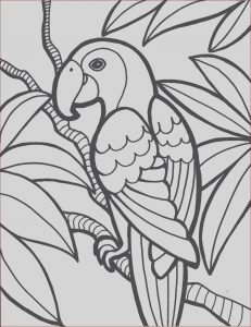 Coloring Pages to Print for Kids Inspirational Collection Free Printable Parrot Coloring Pages for Kids