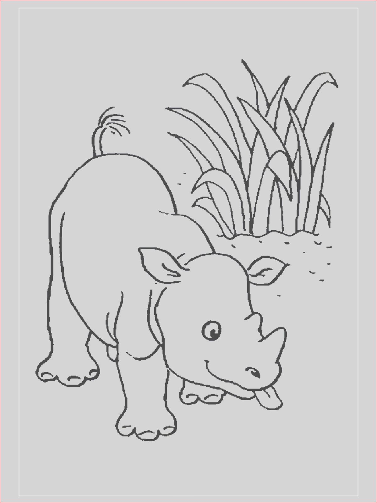 rhino coloring pages for kids