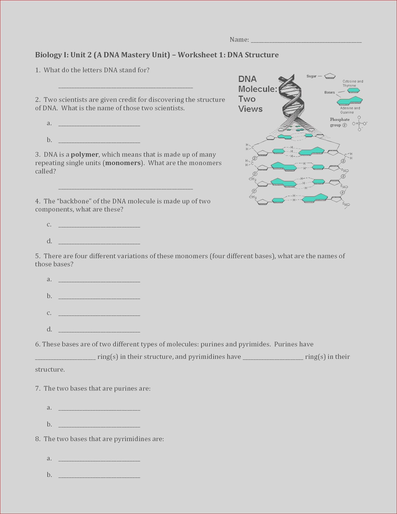 post dna replication structure worksheet and answers