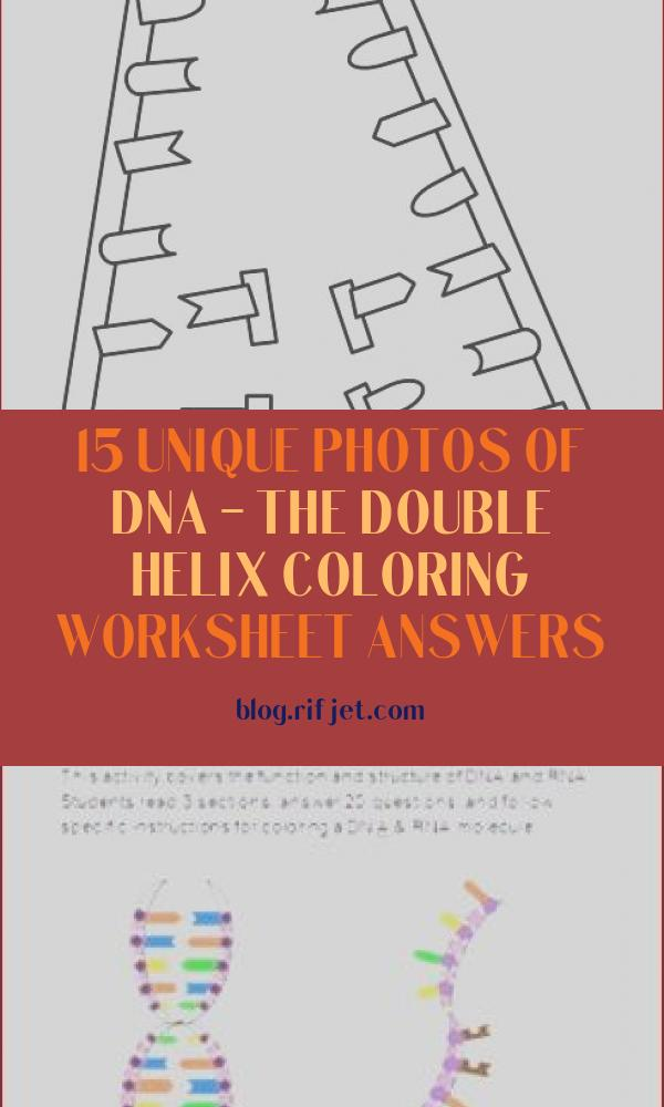 15 Unique Photos Of Dna - the Double Helix Coloring ...
