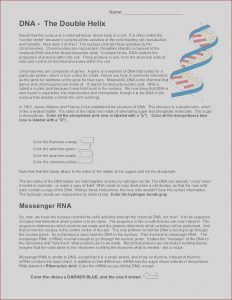 Dna the Double Helix Coloring Worksheet Answers Best Of Photos Dna Coloring