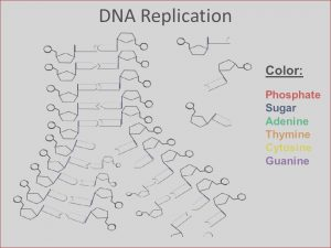 Dna the Double Helix Coloring Worksheet Answers Elegant Photography Dna the Double Helix Coloring Worksheet Answers 1