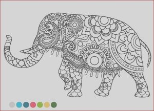 Elephant Mandala Coloring Pages Cool Images 9 Elephant Coloring Pages Free Sample Example format