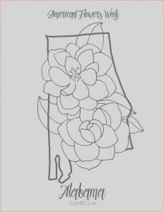 Free Coloring Images Unique Images 50 State Flowers — Free Coloring Pages