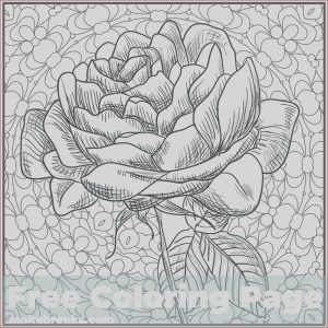High Resolution Coloring Book Images New Image Romantic Rose Flower Coloring Page Make Breaks