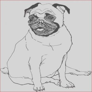 How to Get A Coloring Book Published Luxury Photos Coloring Pug Coloring Pages Pug Coloring Books for