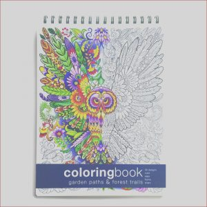 How to Publish A Coloring Book Unique Photos Best Adult Coloring Books Of 2020 – Embrace the Child