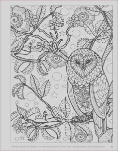 How to Publish An Adult Coloring Book New Image Awesome Owls Coloring Book by Fox Chapel Publishing