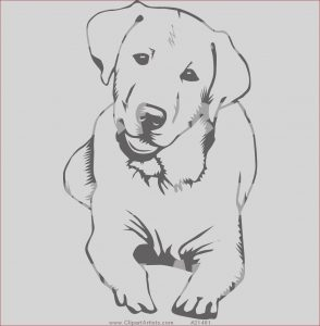 Labrador Coloring Unique Gallery Labrador Coloring Pages Google Search