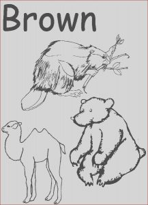 Preschool Coloring Activity Beautiful Photography Colors Coloring Pages for Preschool Google Search