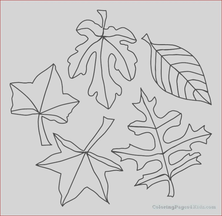 autumn coloring pages 1024