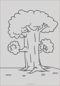 Printing Coloring Sheets Inspirational Photos Free Printable Tree Coloring Pages for Kids