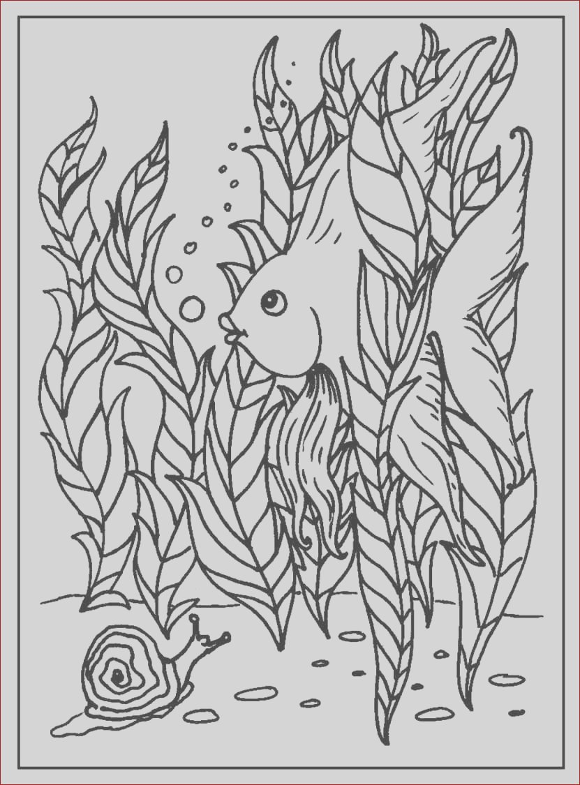 funnyfishcoloringpages