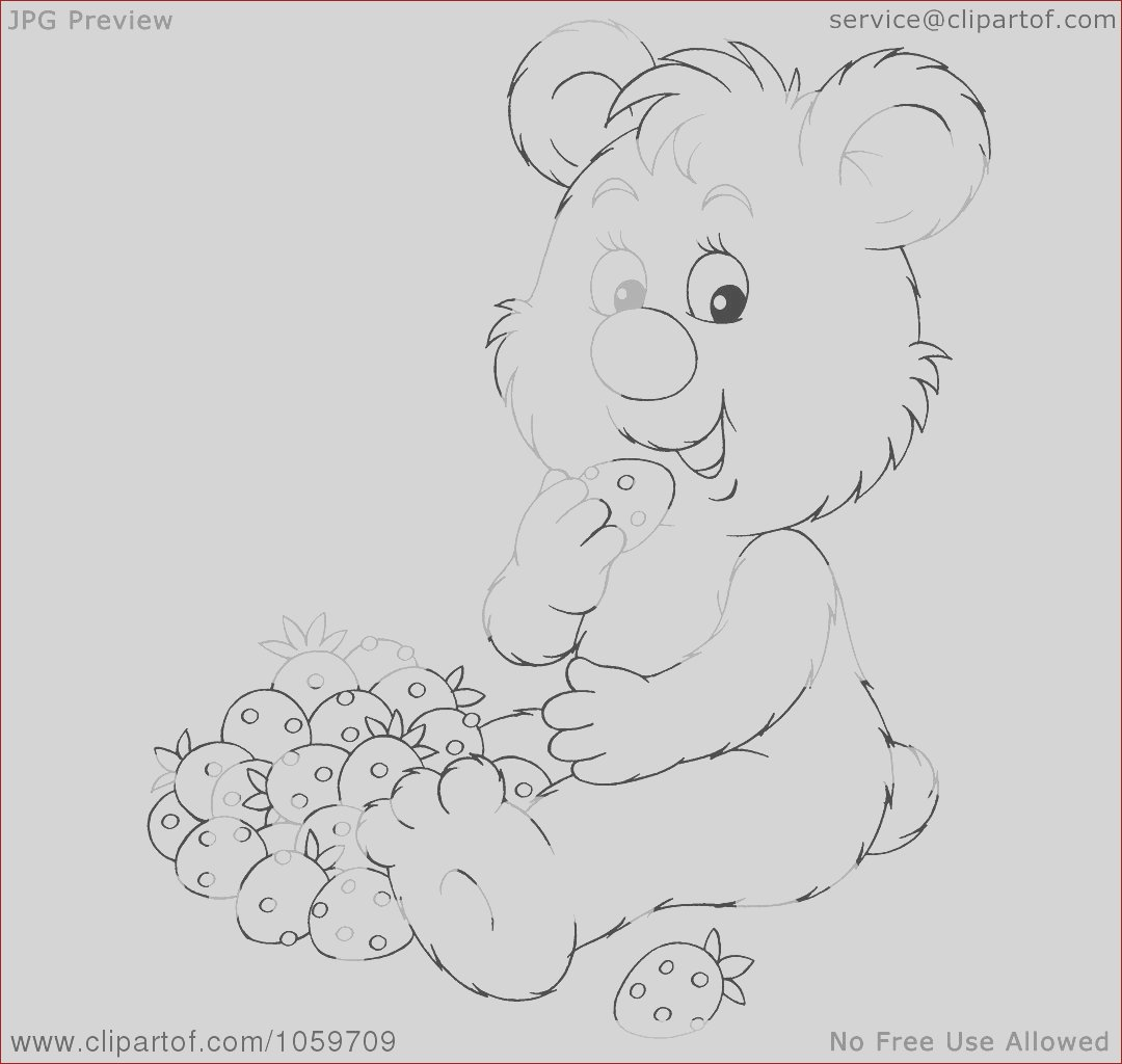 coloring page outline of a bear eating strawberries