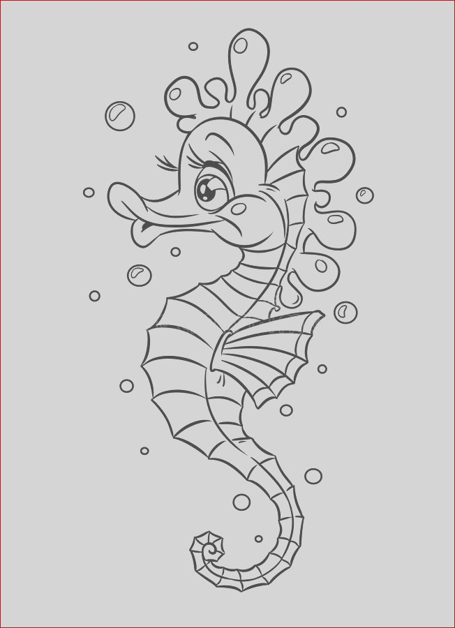royalty free stock images fish sea horse coloring pages illustration image