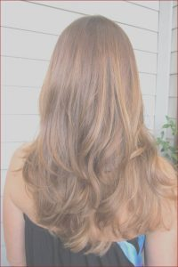 What is In Caramel Coloring Cool Gallery 28 soft and Girlish Caramel Hair Ideas Styleoholic