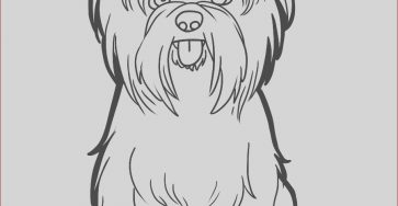 Yorkie Coloring Cool Image Yorkie Coloring Page Coloring Home