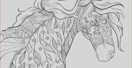 Adult Coloring Pages Horse Beautiful Collection Horse Coloring Pages for Adults Best Coloring Pages for Kids