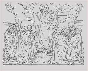 Bible Coloring Pages Free Beautiful Gallery Free Printable Bible Coloring Pages for Kids
