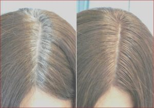 Coloring Gray Roots Best Of Photos How to Hide Gray Hair