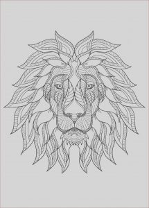 Coloring Lion Beautiful Photography Lion Free to Color for Children Lion Kids Coloring Pages