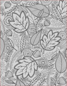 Fall Coloring Pages Free Awesome Photography Alisaburke A Fall Coloring Page for You
