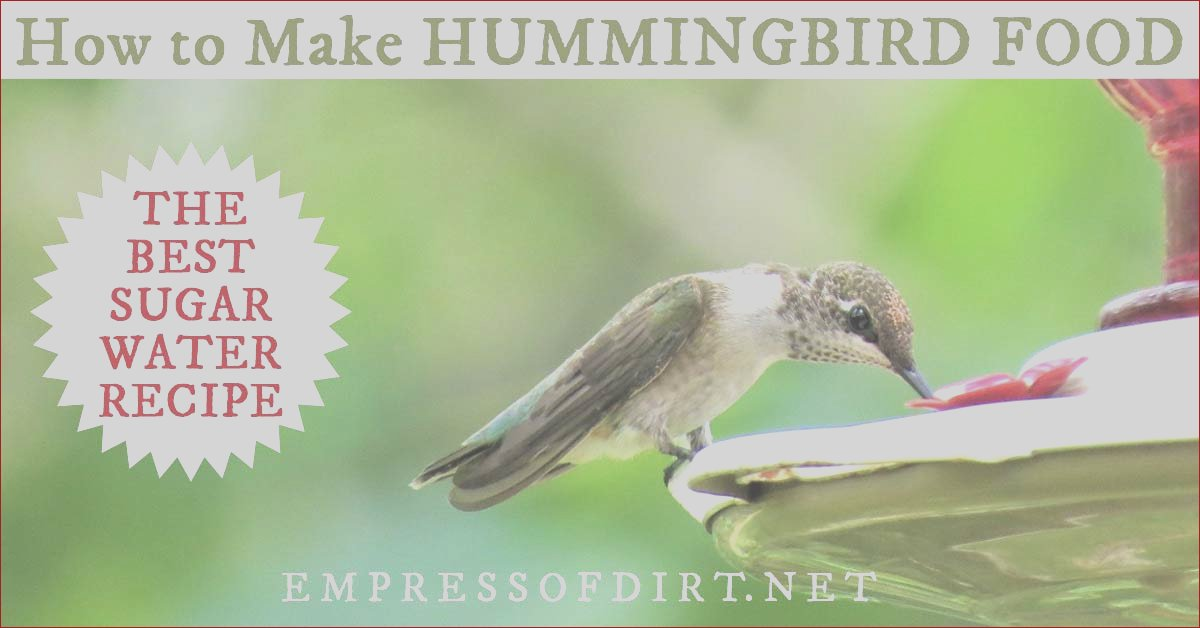 is red food coloring safe for hummingbirds