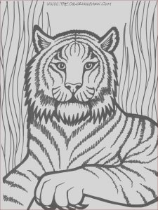 Printing A Coloring Book New Photos Lion Coloring Pages