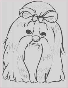 Shih Tzu Coloring Luxury Photography Shih Tzu Coloring Page at Getcolorings
