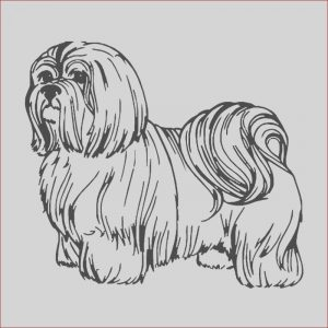 Shih Tzu Coloring Unique Collection Shih Tzu Imperial Coloring Pages Print Coloring
