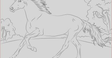 Horse Coloring Pages Printable Awesome Photos Running Arabian Horse Coloring Page