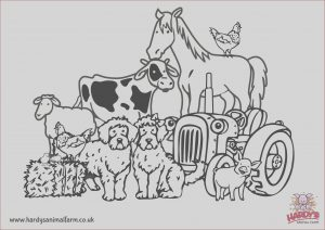 Agriculture Coloring Pages Cool Photos Colouring Pages Hardys Animal Farm