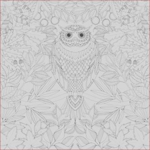 Coloring Book software Free Download Inspirational Photos Colouring Book Pdf Google Search