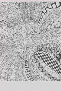 Coloring Books Adults Beautiful Photography Lion Zentangle Adult Coloring Page Instant by