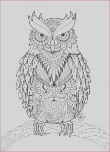 Coloring for Adults Online Elegant Photos Owl Coloring Pages for Adults Free Detailed Owl Coloring