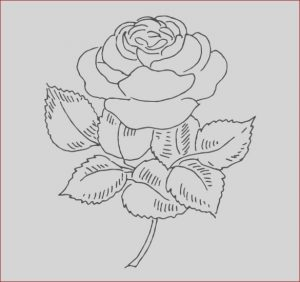 Coloring Pages Pdf Cool Photos 21 Flower Coloring Pages Psd Ai Vector Eps