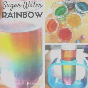 Food Coloring Science Projects Awesome Images Rainbow In A Jar Water Density Experiment