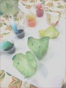 Food Coloring Science Projects Beautiful Gallery Cabbage Leaves Food Coloring Science Project We Used Food