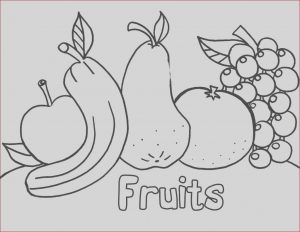 Free Printable Coloring Pages for Kindergarten Unique Gallery Free Printable Preschool Coloring Pages Best Coloring