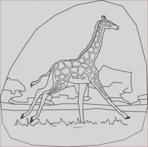 Girafe Coloring Awesome Stock Coloring Pages for Kids Giraffe Coloring Pages for Kids