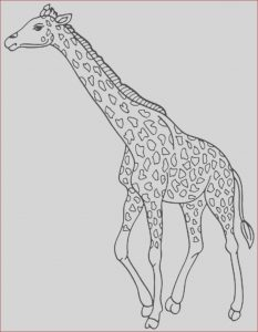 Girraffe Coloring Unique Photos Print & Download Giraffe Coloring Pages for Kids to Have Fun