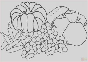 Harvest Coloring Pages Beautiful Images Autumn Harvest Coloring Page
