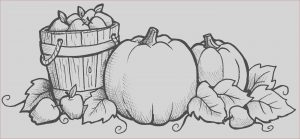 Harvest Coloring Pages Elegant Photos Harvest Coloring Pages Best Coloring Pages for Kids