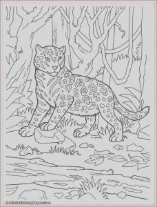 Jungle Printable Coloring Pages Beautiful Stock Jungle Scene Coloring Pages at Getcolorings
