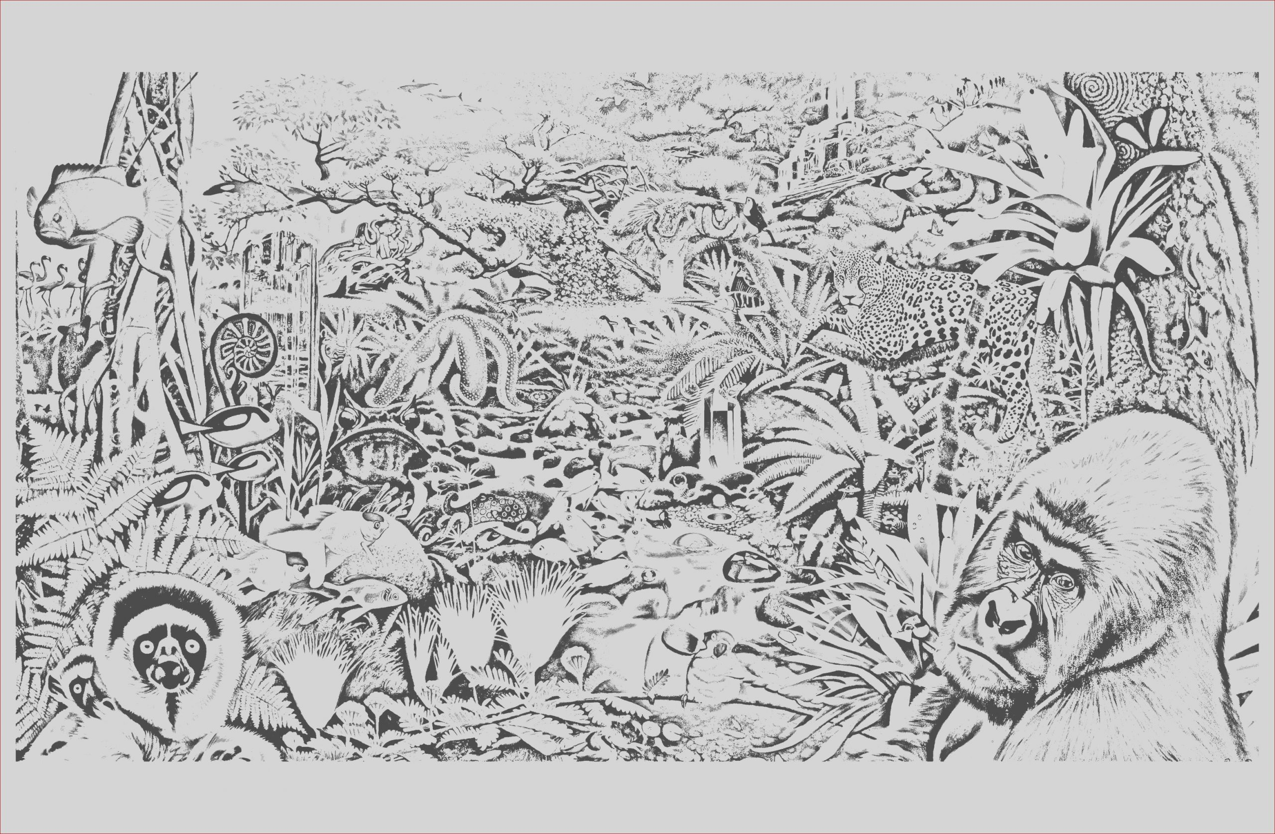 image=jungle forest coloring jungle forest animals 1