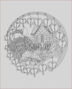 Mandalas Coloring for Adults Cool Gallery This Mandala Coloring Book for Grown Ups is the Creative S